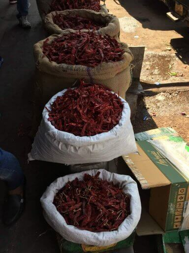 Jaipur dried chillis
